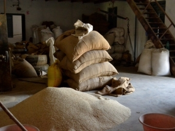 In the rice mill, the slaves were forced to work into the wee hours of the morning, earning pennies and growing malnourished.